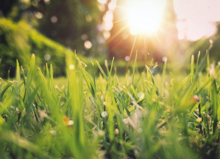 Tavaszi-nyári akciós hétköznapok 3=4